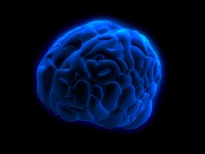 blue_brain_3